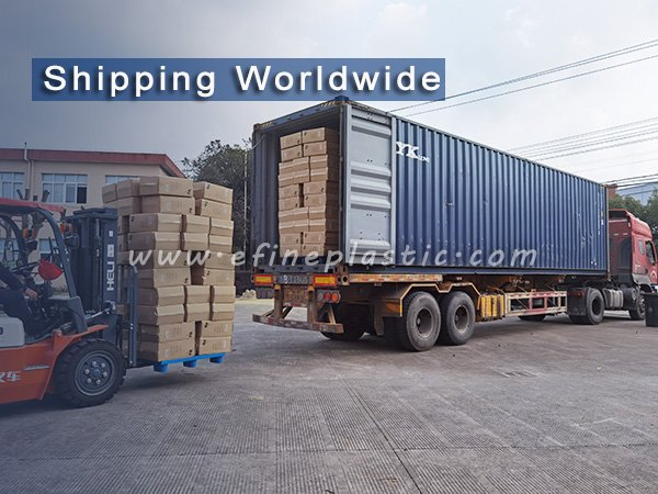 foodservice packaging manufacturer shipping worldwide